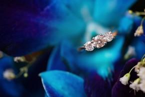 http://navaphotography.com.au/sydney-wedding-couples-engagement-photographer-nav-a-photography/preview-jason-and-fozia-wedding-and-mehndi-mash-up/